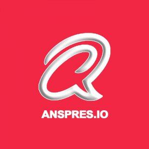 AnsPress - полный перевод на русский язык